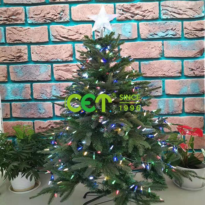 C.E.T Array image418