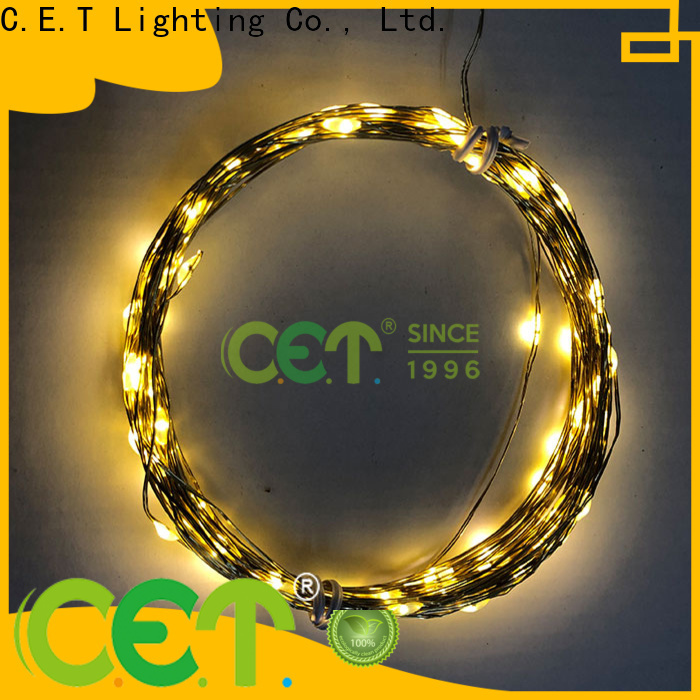 C.ET copper string lights order now for outdoor party