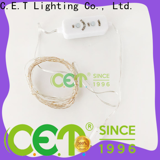 C.ET copper wire lights battery operated order now for outdoor party