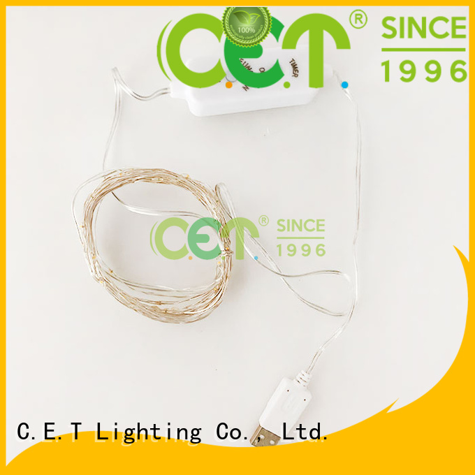 C.ET led copper wire light factory price for bedroom