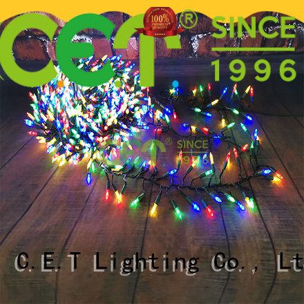 C.ET Xmas lights inquire now for Christmas